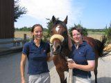 Praxisgründung Pferdepraxis